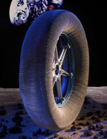 Лунная шина